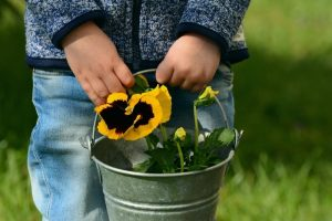 child holding flowers in pot
